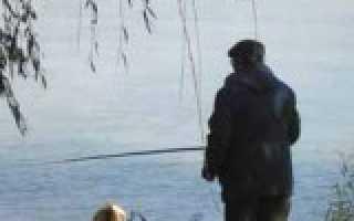 Смоленск александровское озеро
