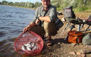 Успех рыбалки мозыре