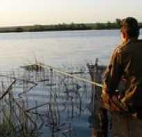 Рыбалка в навлинском районе