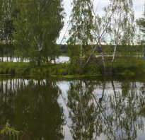 Рыбалка зарайский район дятлово