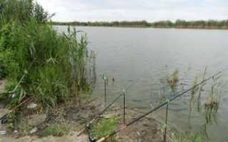 Рыбалка в кучугурах краснодарского края