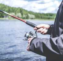 Рыбалка в казанское