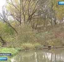 Река цыганка рыбалка