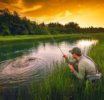 Рыбалка в иваново куда съездить