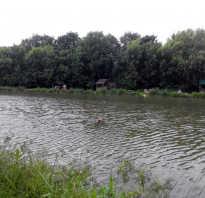 Рыбалка на академической
