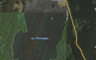 Пялозеро кондопожский район фото