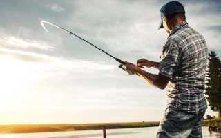 Рыбалка в петергофе