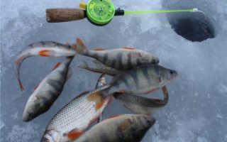 Рыбалка в нижнем тагиле места