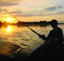 Рыбалка жуковский район