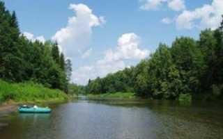 Мишуково ногинский район рыбалка