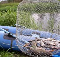 Где половить рыбу в пушкинском районе