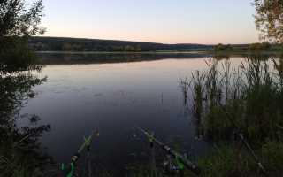 Прогноз клева рыбы в мордовии