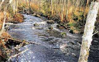 Река лемовжа какая рыба водится