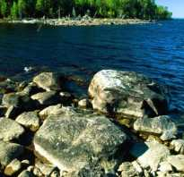 Муезерский район рыбалка