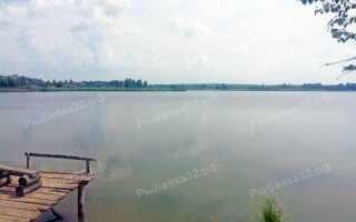 Локня белгородская область рыбалка