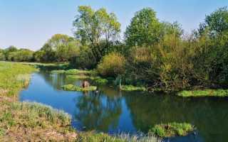 Река неручь в калужской области