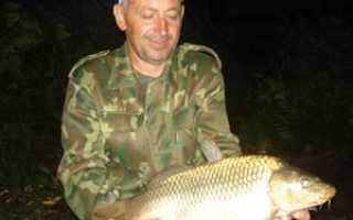 Рыбалка в самарской области новокуйбышевск