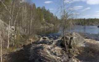 Рыбалка на реке чирка кемь