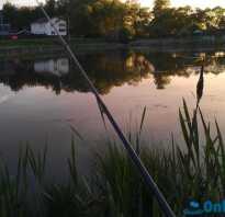 Рыбалка в бурцево московская область