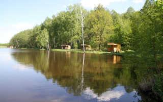 Рыбалка в токарево люберецкий район