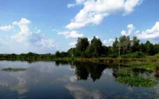 Рыбалка в некрасово свердловской области