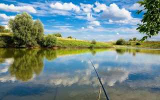 Рыбалка архангельское красногорск