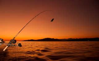 Платная рыбалка в космынино кострома