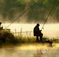 Ольшанка пруд курская область