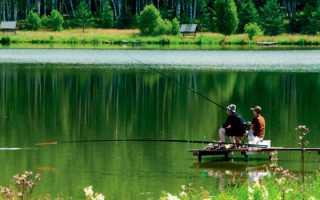 Ловля судака в нижегородской области