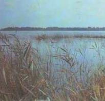 Озеро жеринское