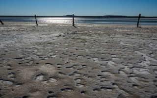 Температура воды в озере баскунчак