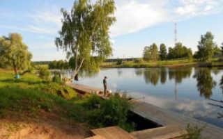 Рыбалка в трусово солнечногорского района
