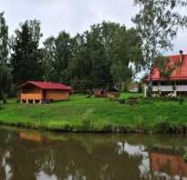 Александровка пруд воронеж