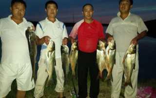 Рыбалка алматы