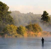 Река кумса карелия рыбалка