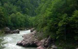 Река белая температура воды