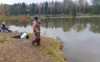 Рыбалка в подмосковье серпухов