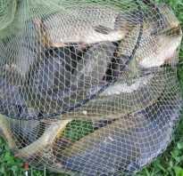 Рыбалка в изварино