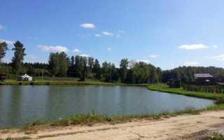 Рыбалка в кулаково чеховский район