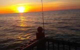 Рыбалка в светлогорске