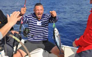 Рыбалка в киришах