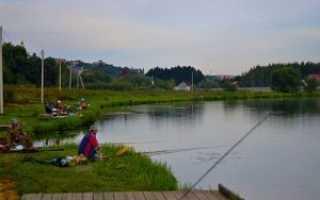 Рыбалка в рыболово раменский район
