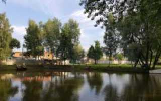 Рыбалка в щелковском районе в мальцево
