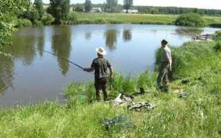 Ловля рыбы в деревне