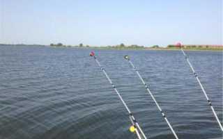 Погода в рогожкино для рыбалки