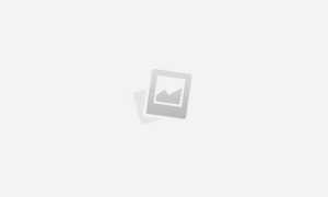 Рыболовные снасти для новичка