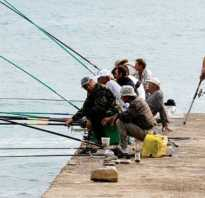 Озеро аргаяш рыбалка
