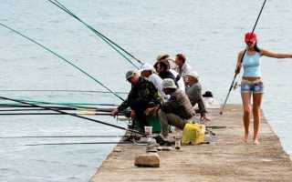 Александровы пруды рыбалка